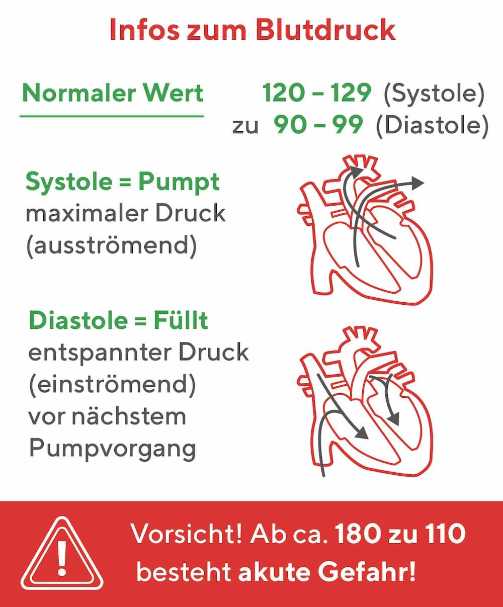 Infos zum Blutdruck