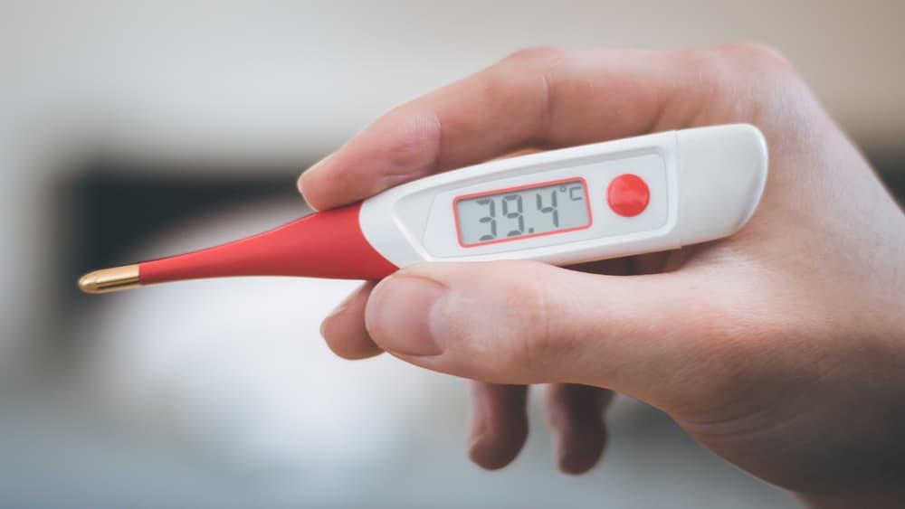 Digitales Fieberthermometer © Patrick Daxenbichler, stock.adobe.com