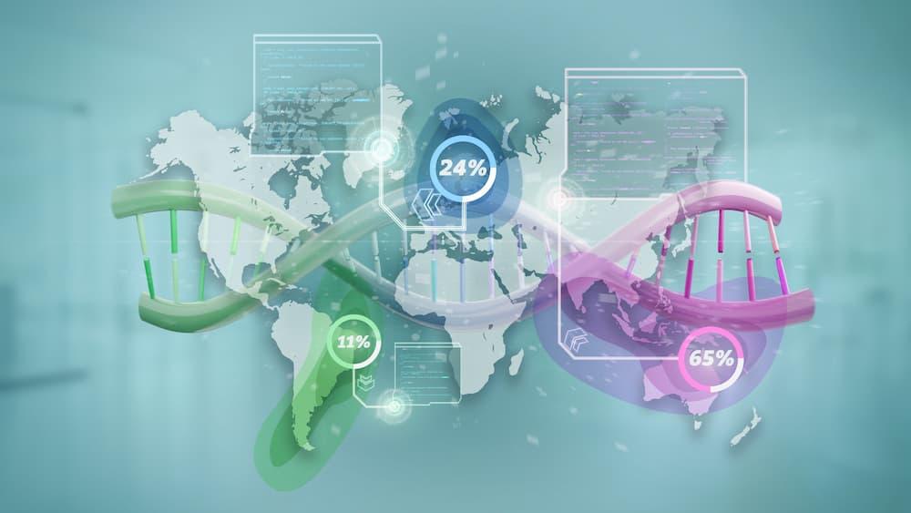 Die DNA-Genealogie ermittelt u.a. die regionale Herkunft der Vorfahren © Production Perig, stock.adobe.com