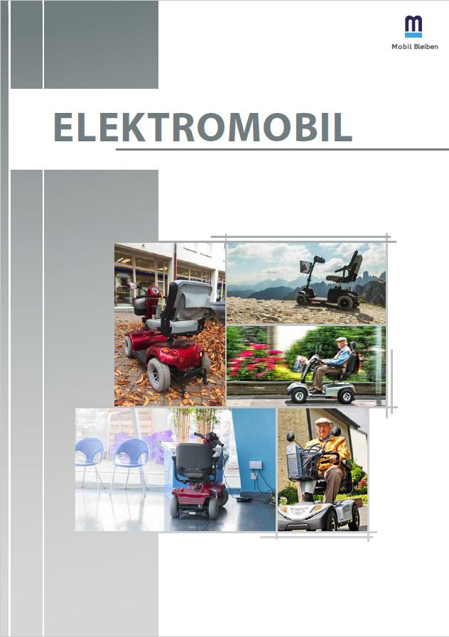 E-Book Ratgeber Elektromobil